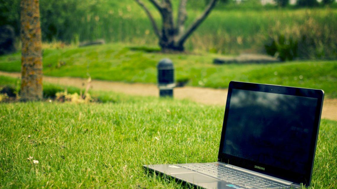 Le métier de paysagiste : ce que vous devez savoir