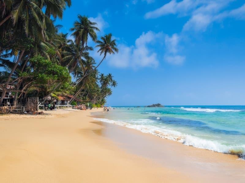 Que faire lors d'un séjour au Sri Lanka? Top3 des sites à visiter